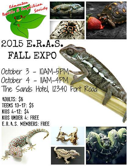Edmonton reptile Expo, Red Deer, Calgary, Alberta