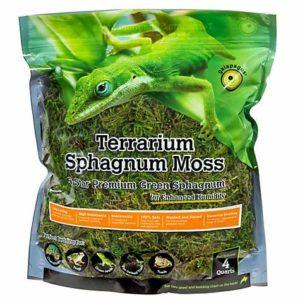 Galapagos Terrarium Green Sphagnum Moss -4Qt