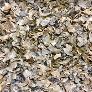 Crushed Oyster Shells Flakes -200gm