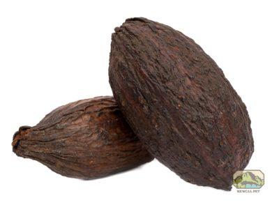 NewCal Cocoa Pod