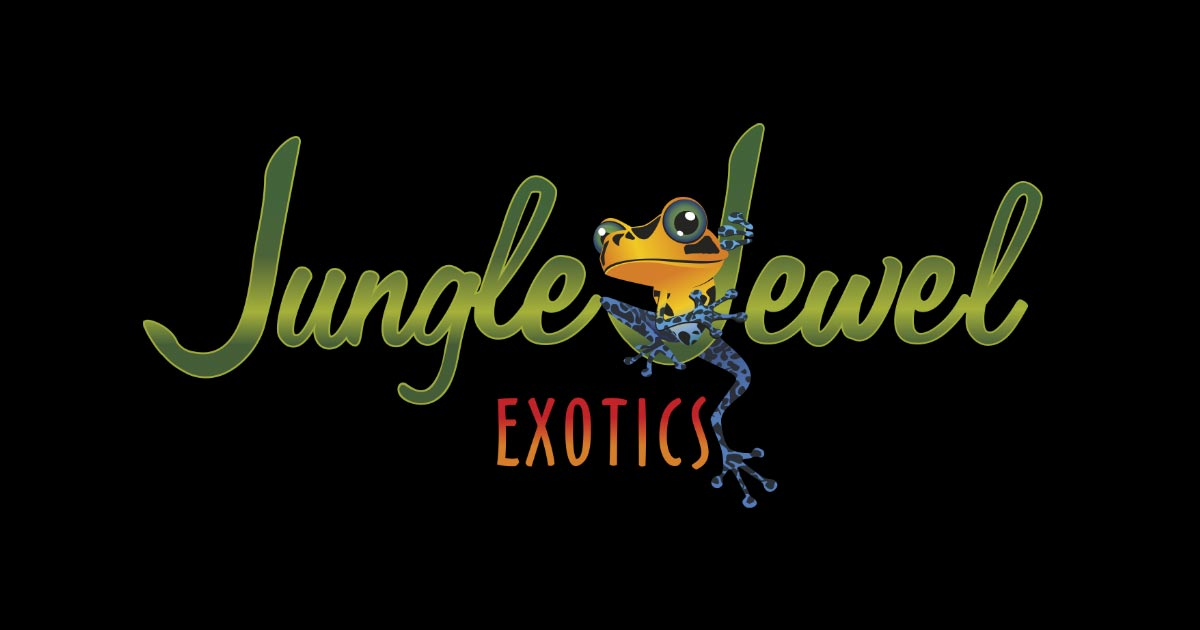 Jungle Jewel Exotic Animals - Education Center