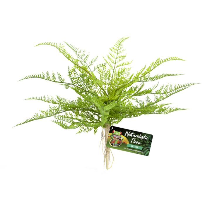 Zoo Med Naturalistic Flora Lace Fern