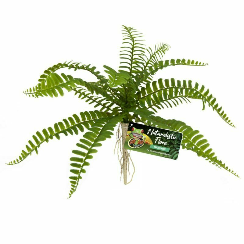 Zoo Med Naturalistic Sword Fern
